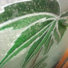 vetro-decorato-palma.jpg